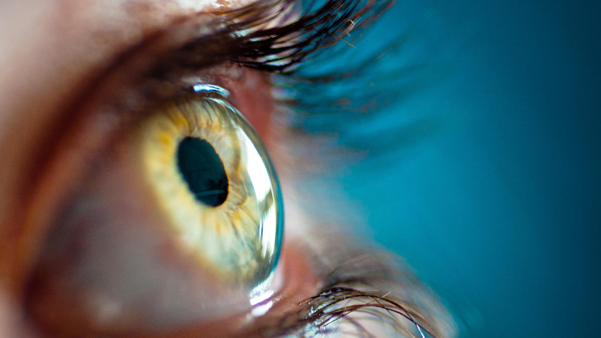 Eye Retina Iris HD Wallpaper 1080p HD Wallpapers 1920x1080