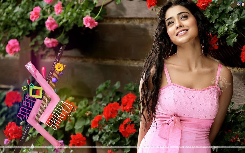 Download Santa Banta HOT Bollywood actress Wallpaper BollyWooD 1440x900