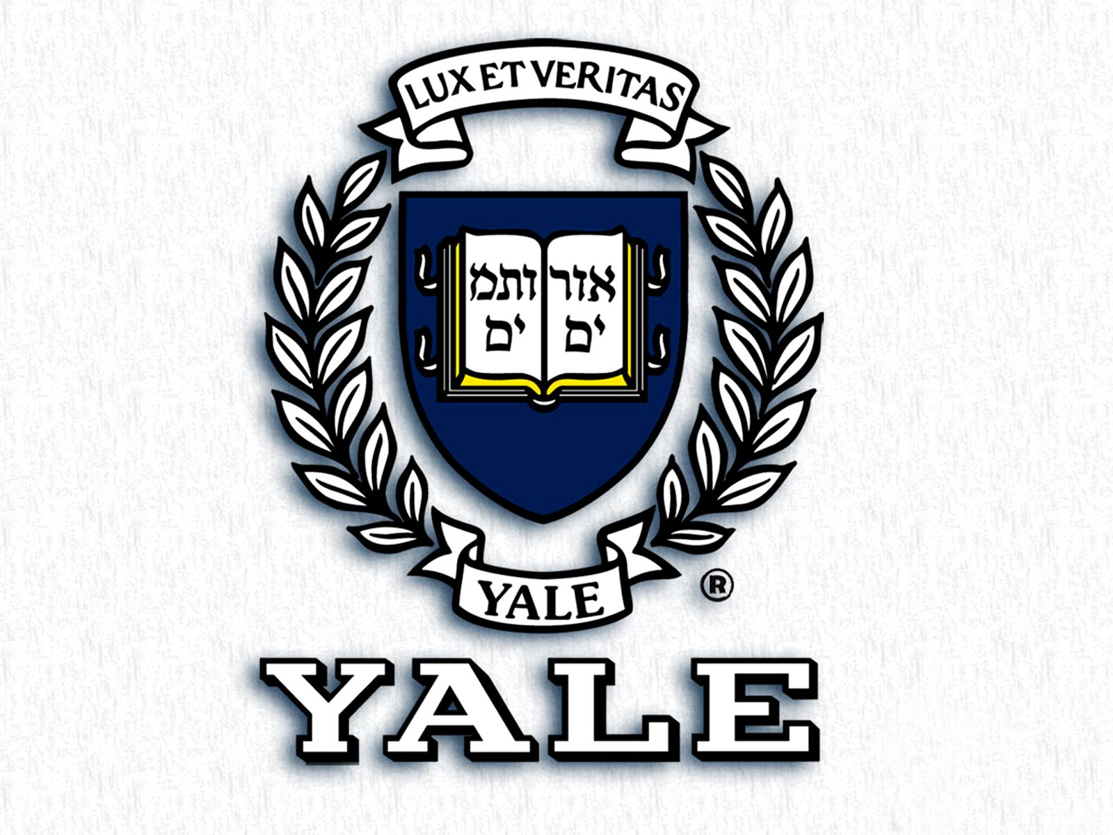 Yale Desktop Wallpapers   Top Yale Desktop Backgrounds 1600x1200