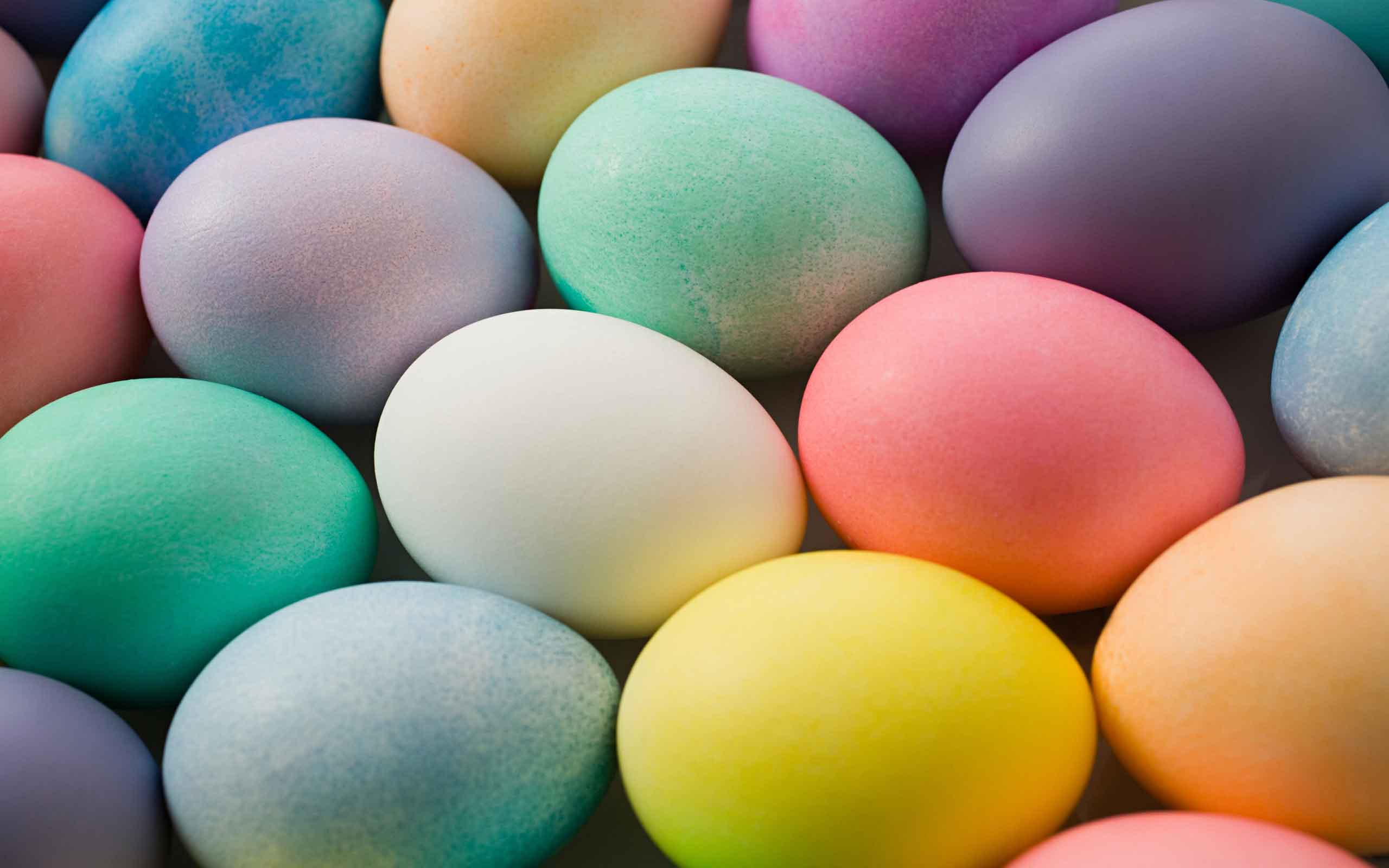Colorful Easter Eggs Wallpaper 28245 2560x1600 px 2560x1600