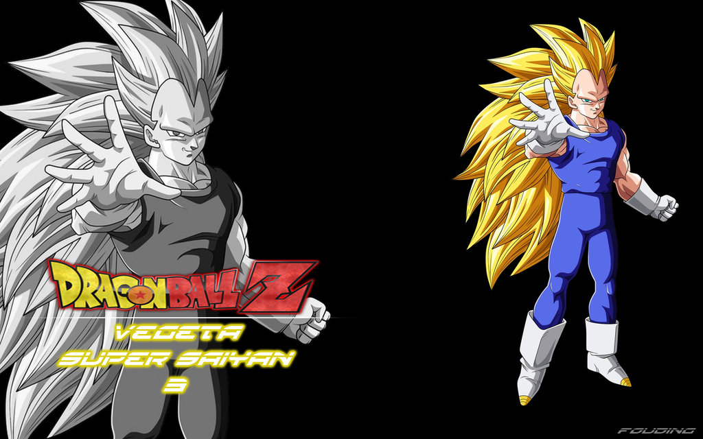 Dragon Ball Z Vegeta Super Saiyan God Wallpaper dragon ball z vegeta 1024x640