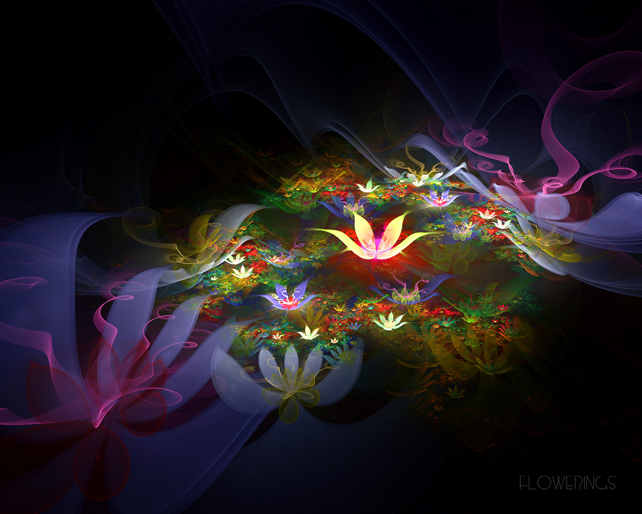 WoowPaper 3d Lotus Flower Wallpaper