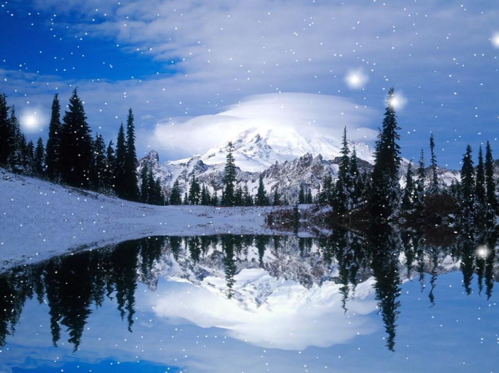 Winter Snow Animated Wallpaper[h33t][Screensavers]   torrent download 978x732