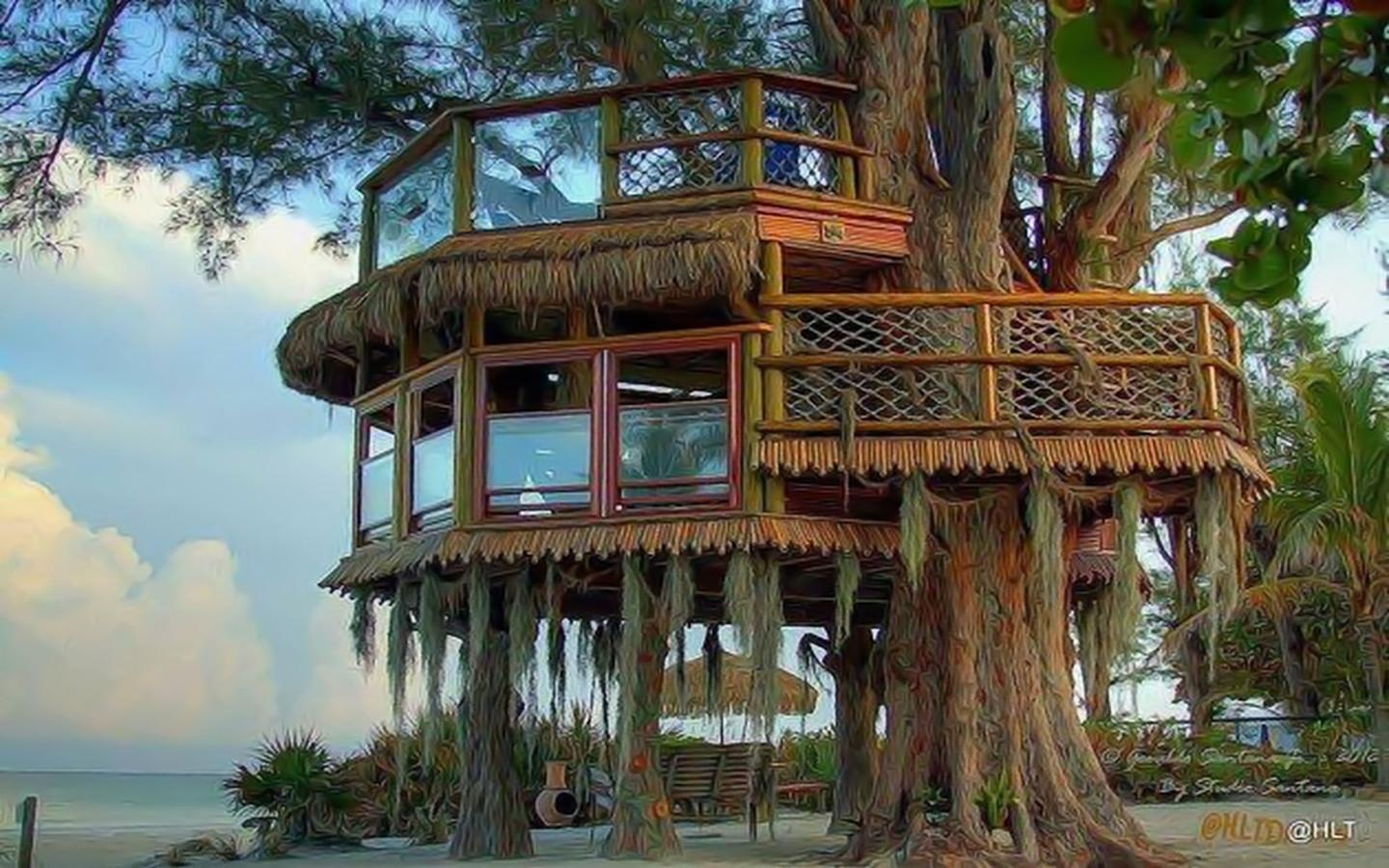 Treehouse desktop wallpaper wallpapersafari for Best house wallpaper