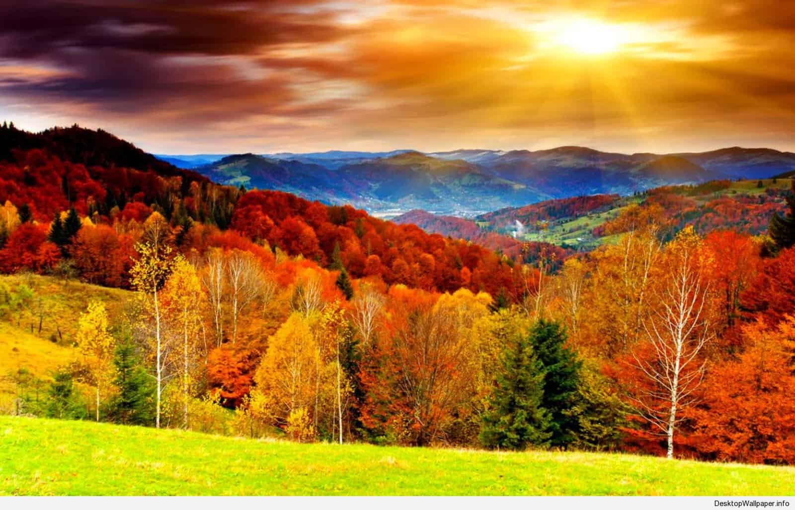 Fall Scenery Wallpapers   Top Fall Scenery Backgrounds 1600x1028