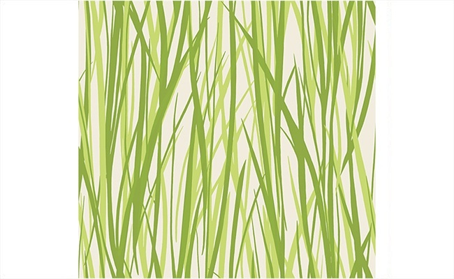 Grass Wallpaper from the Eco Chic Collection design by Seabrook Wallc 650x400