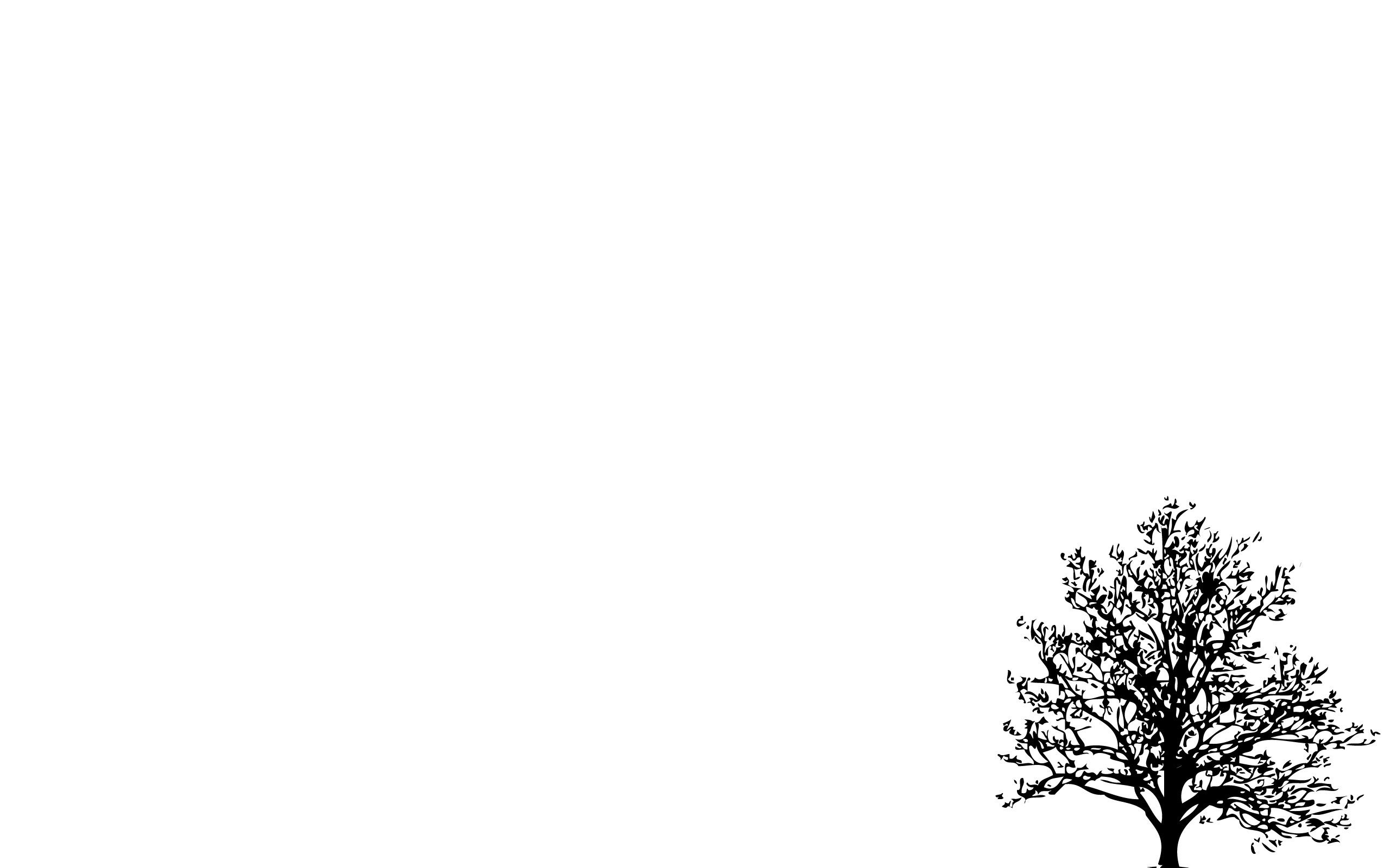 Minimalistic Simple Background Trees White 2560x1600 Latar 2560x1600