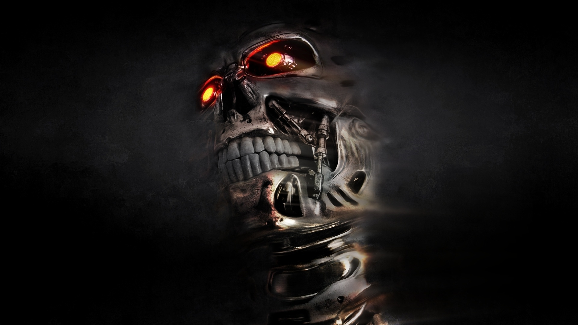 Skull Wallpapers   Desktop Backgrounds 1920x1080