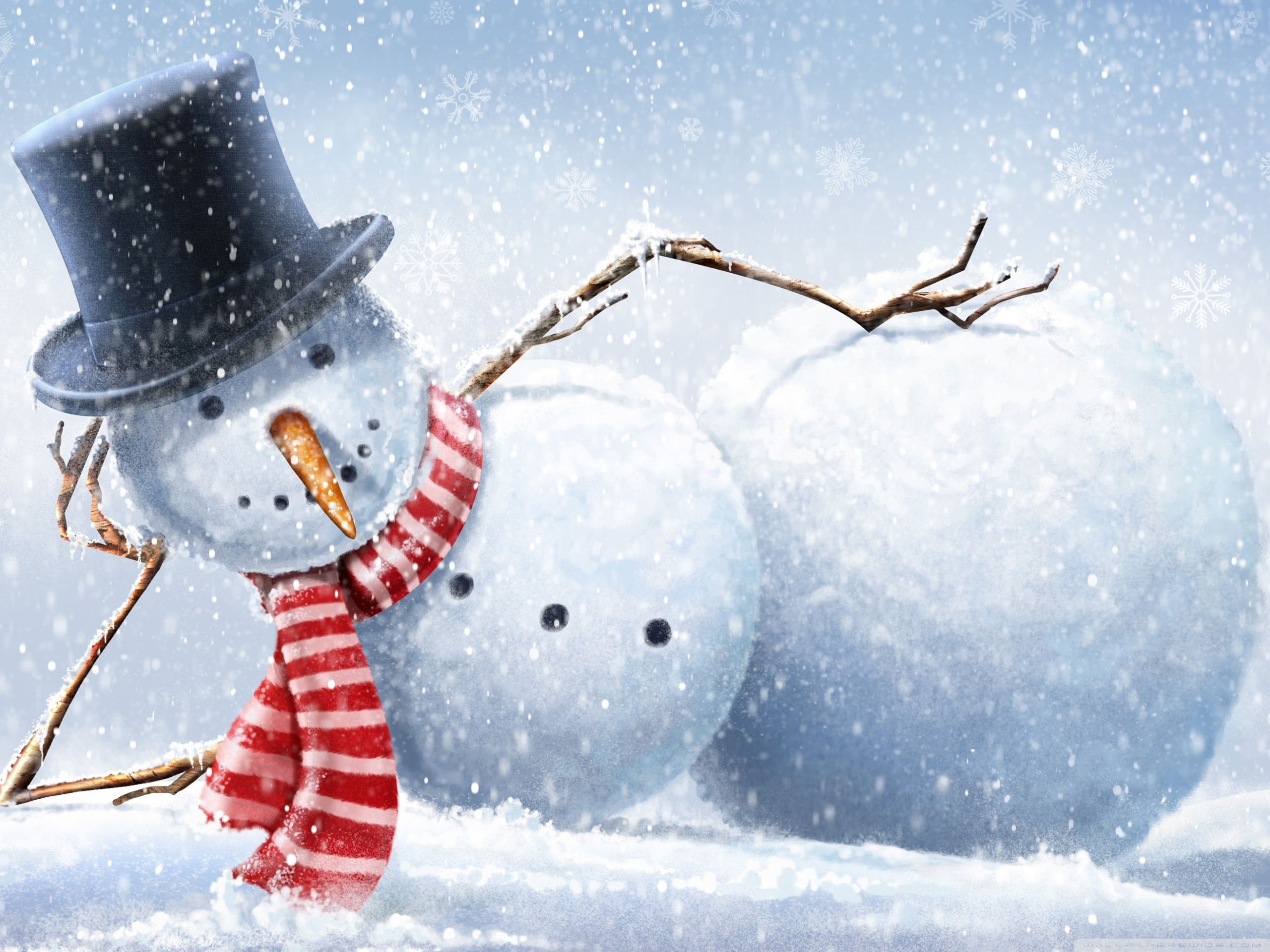 Cool Snowman 4K HD Desktop Wallpaper for 4K Ultra HD TV 2560x1920