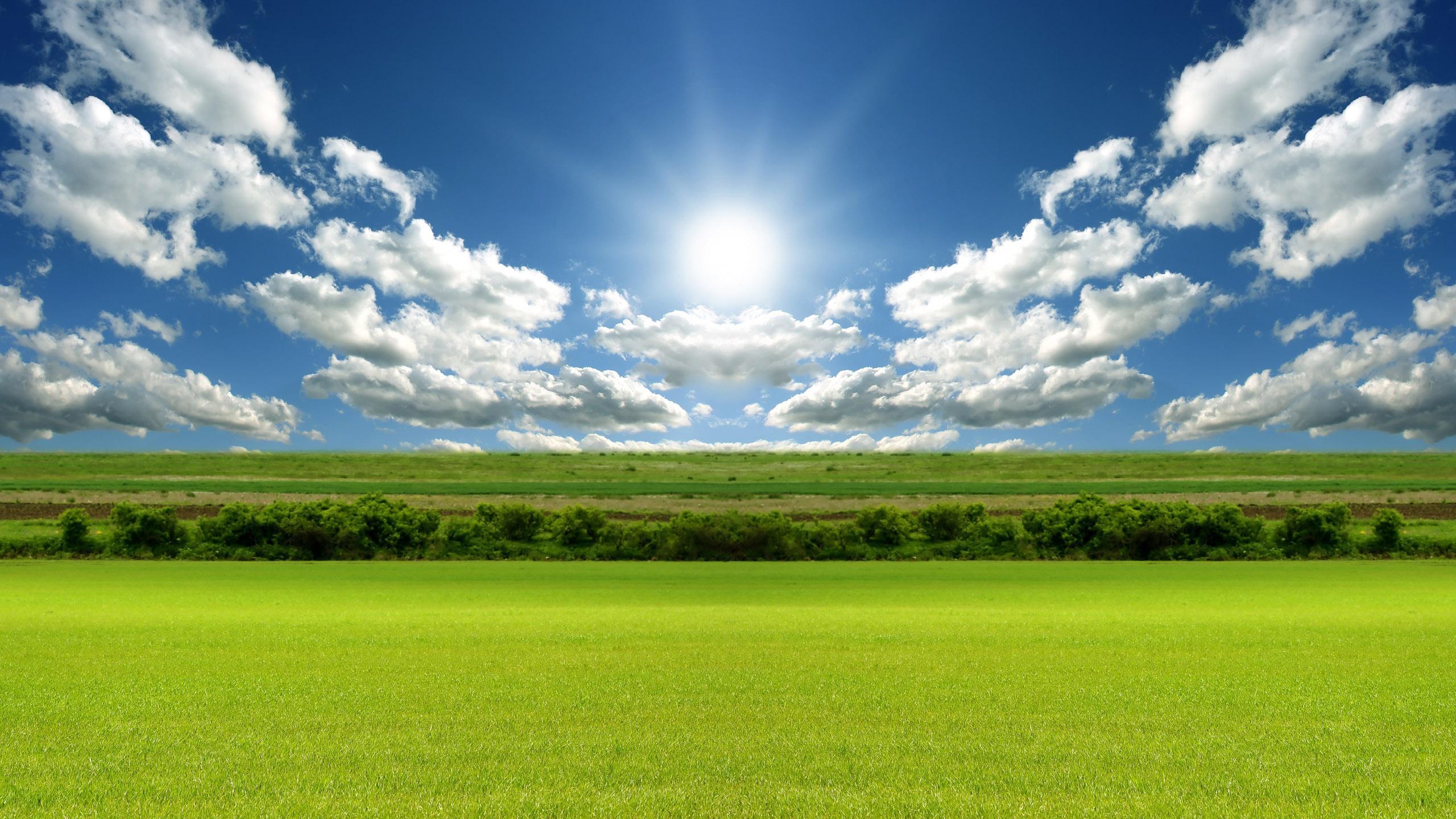 download Beautiful sunny day HQ WALLPAPER 126348 [2560x1440 2560x1440