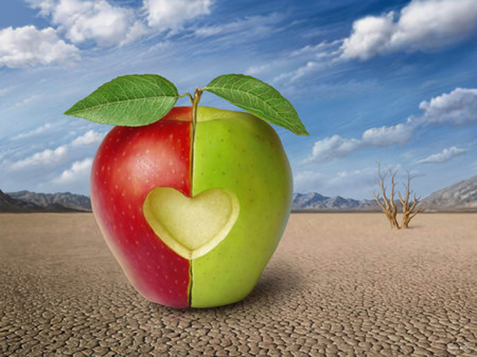 wallpapers Apple Love Wallpapers 1600x1200