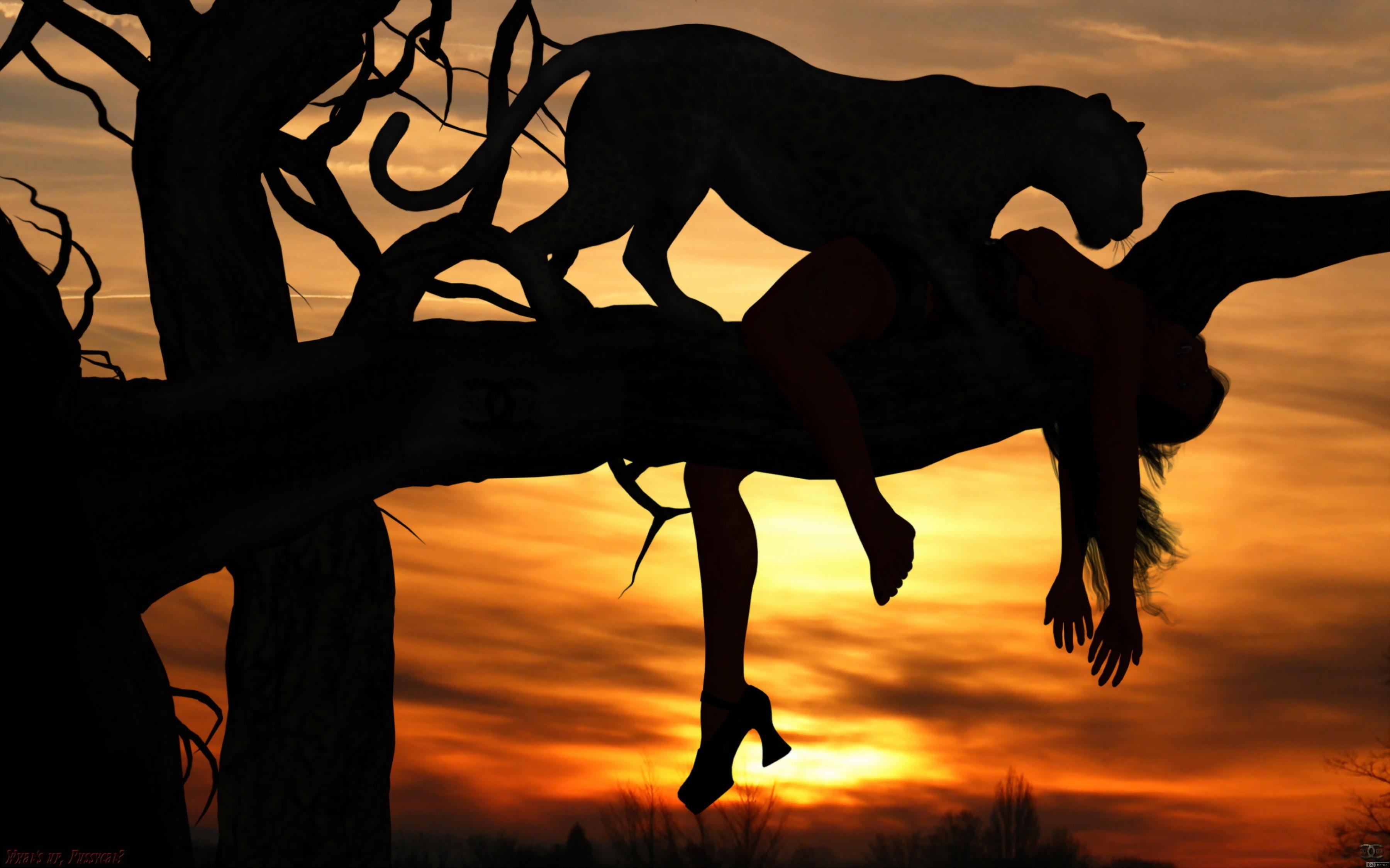 Hd wallpaper elephant - African Wallpapers Wallpapersafari