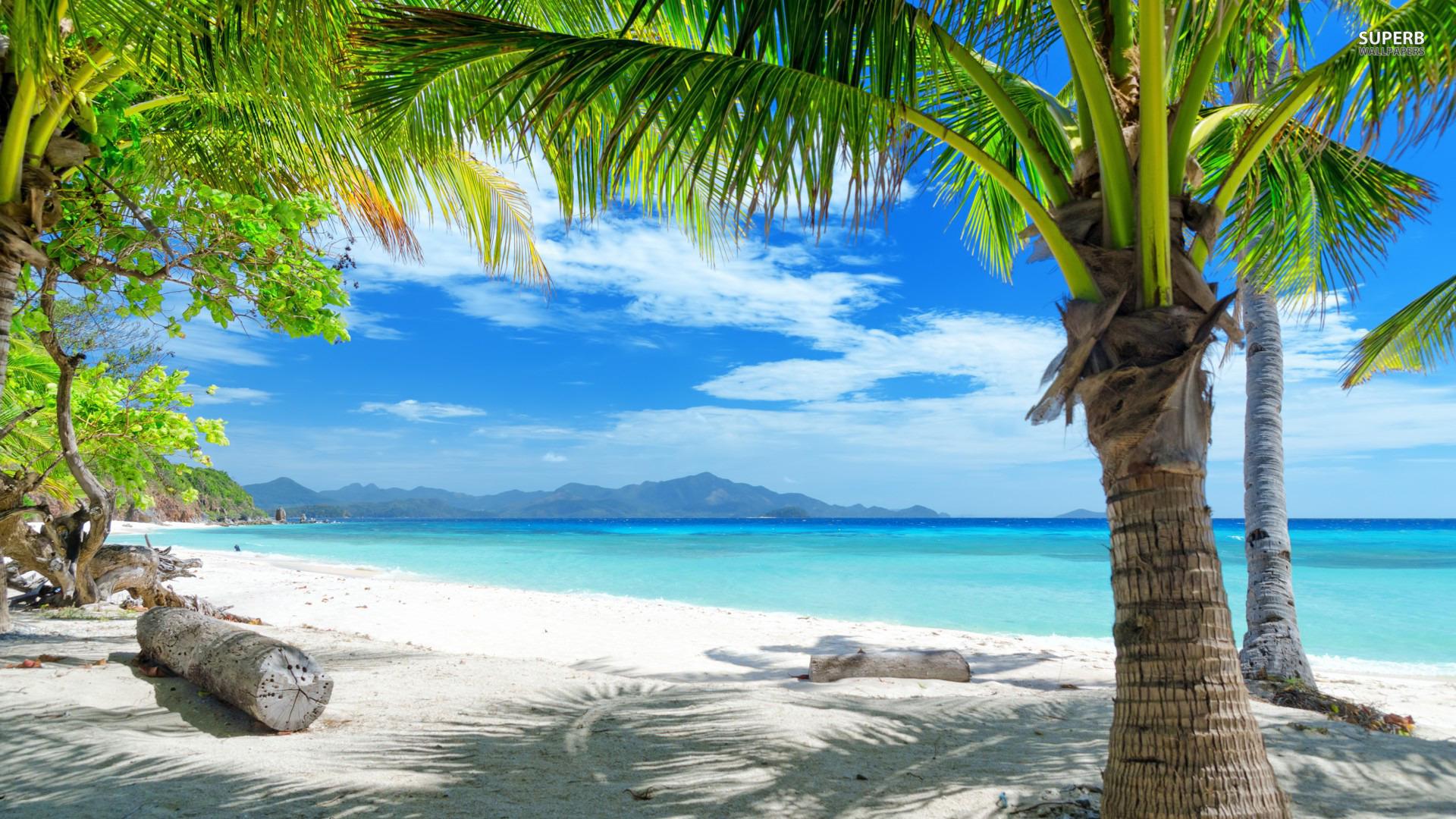 tropical beach   Beautiful Beach Wallpapers HD 1920x1080