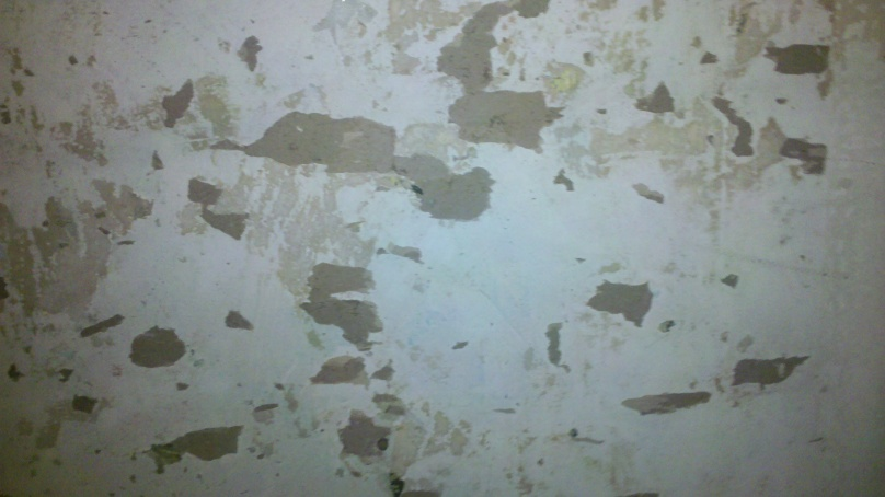 Paint Over Wallpaper Painting over wallpaper   no 808x454