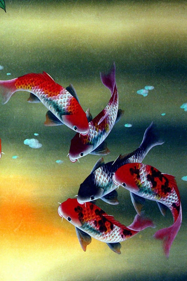 koi free live wallpaper download for ipad