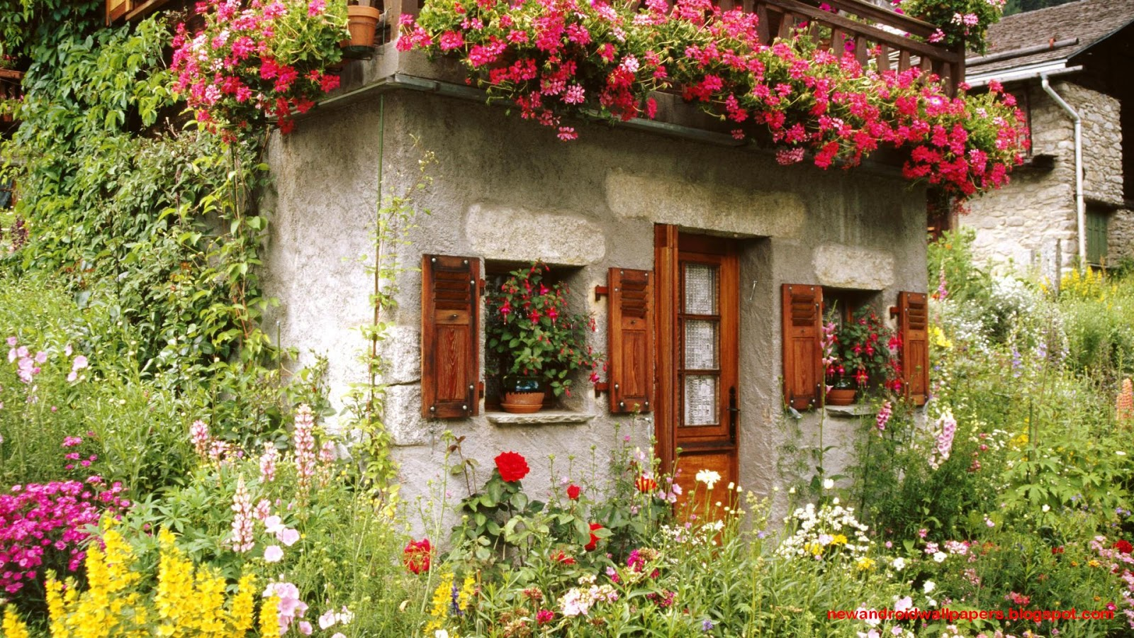 Free Download Beautiful Collection Of Home Garden Wallpapers Download For 1600x900 For Your Desktop Mobile Tablet Explore 49 Wallpaper Of Beautiful Flower Gardens Flower Garden Wallpapers For Desktop Hd
