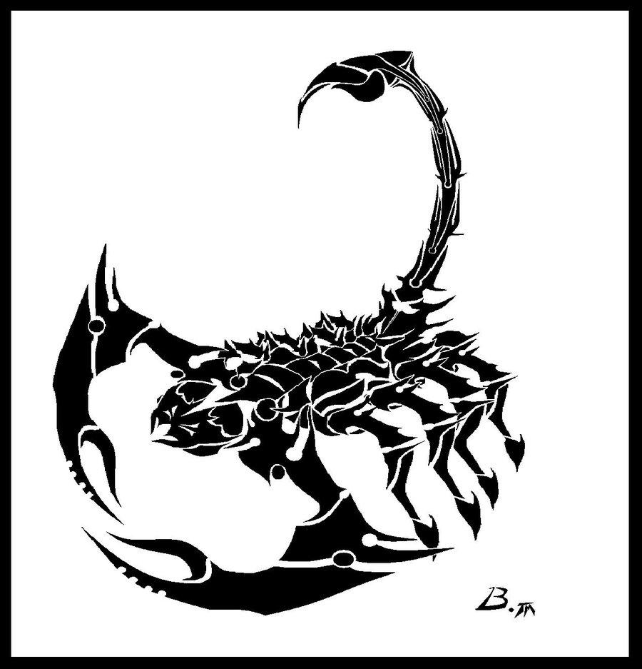 babeskull16deviantartTribal scorpion by 900x937
