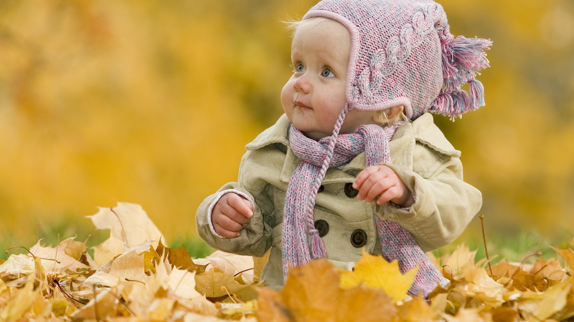 Cute baby fall Wallpaper Widescreen Wallpapers 2014 Desktop 1920x1080
