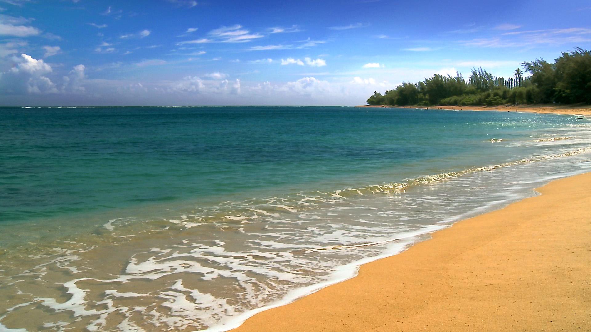 beach wallpapers hawaii beach hd wallpapers hawaii beach hd wallpapers