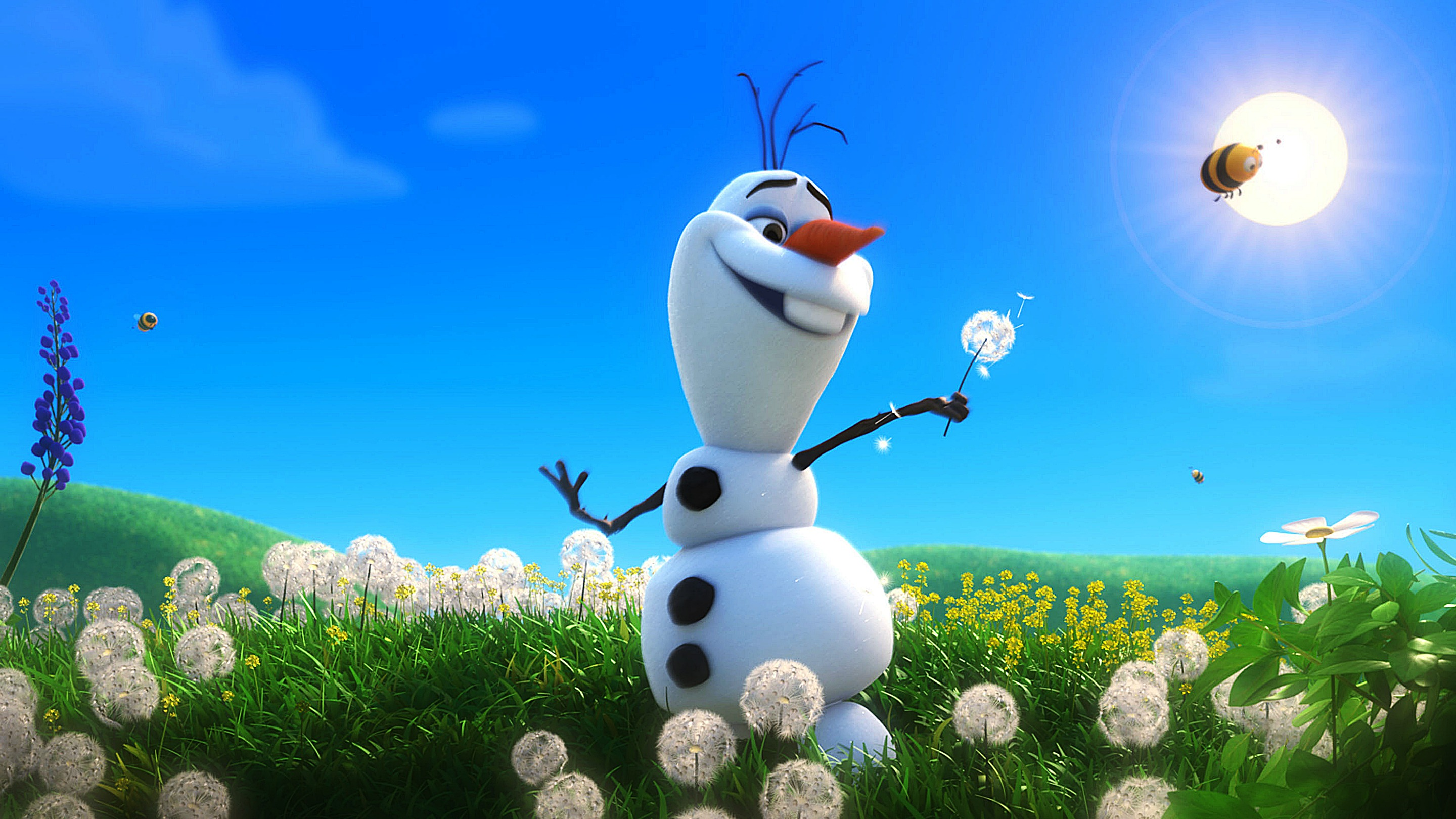 Funny Olaf Snowman In Summer Hd Wallpaper Download Cartoon picture 2880x1620