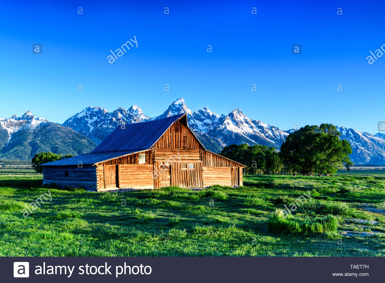 An old barn along Mormon Row with the Grand Tetons in the 1300x956