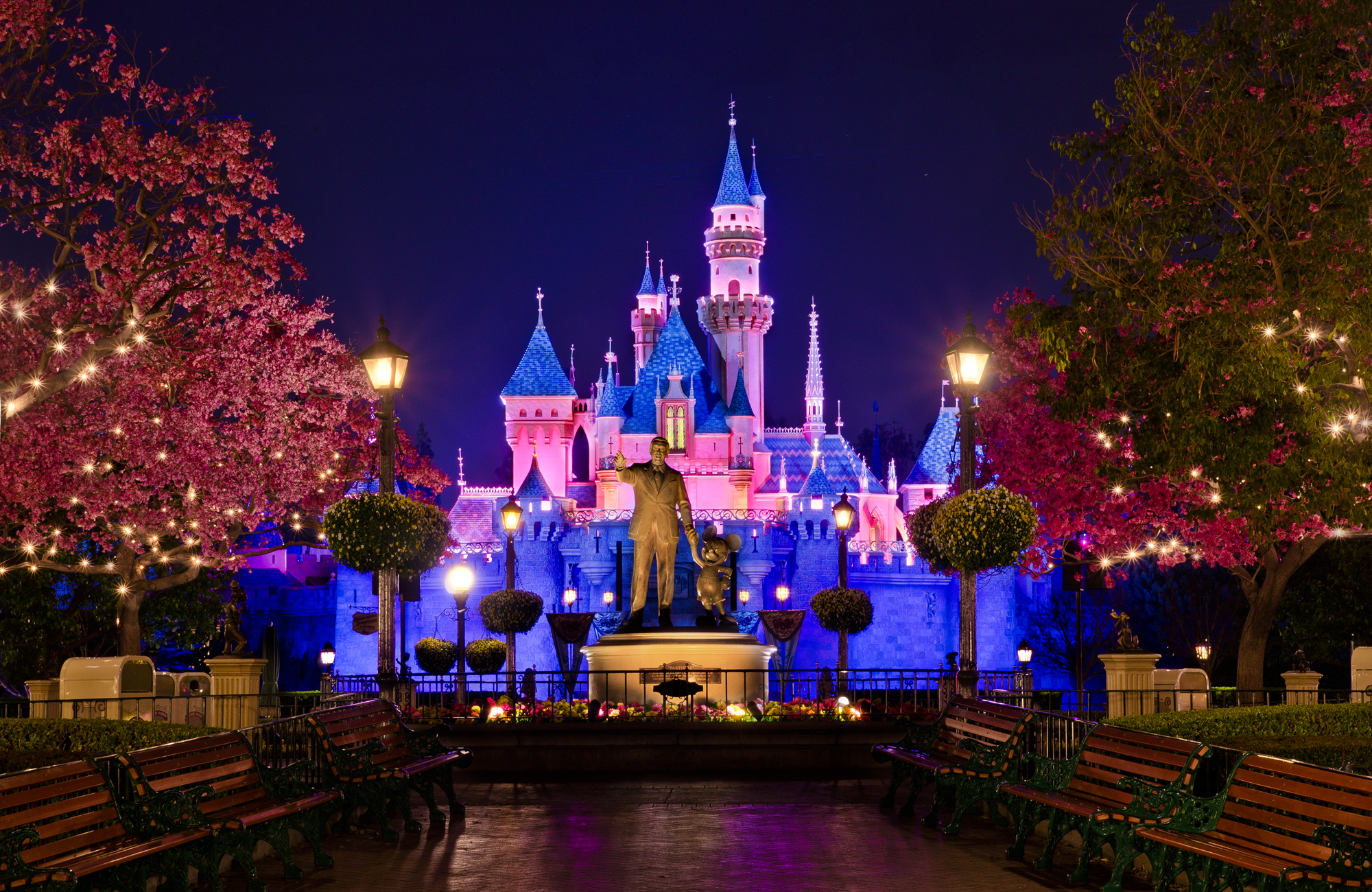 Disneyland Spring Hub Night Photo   Disney Tourist Blog 2000x1300