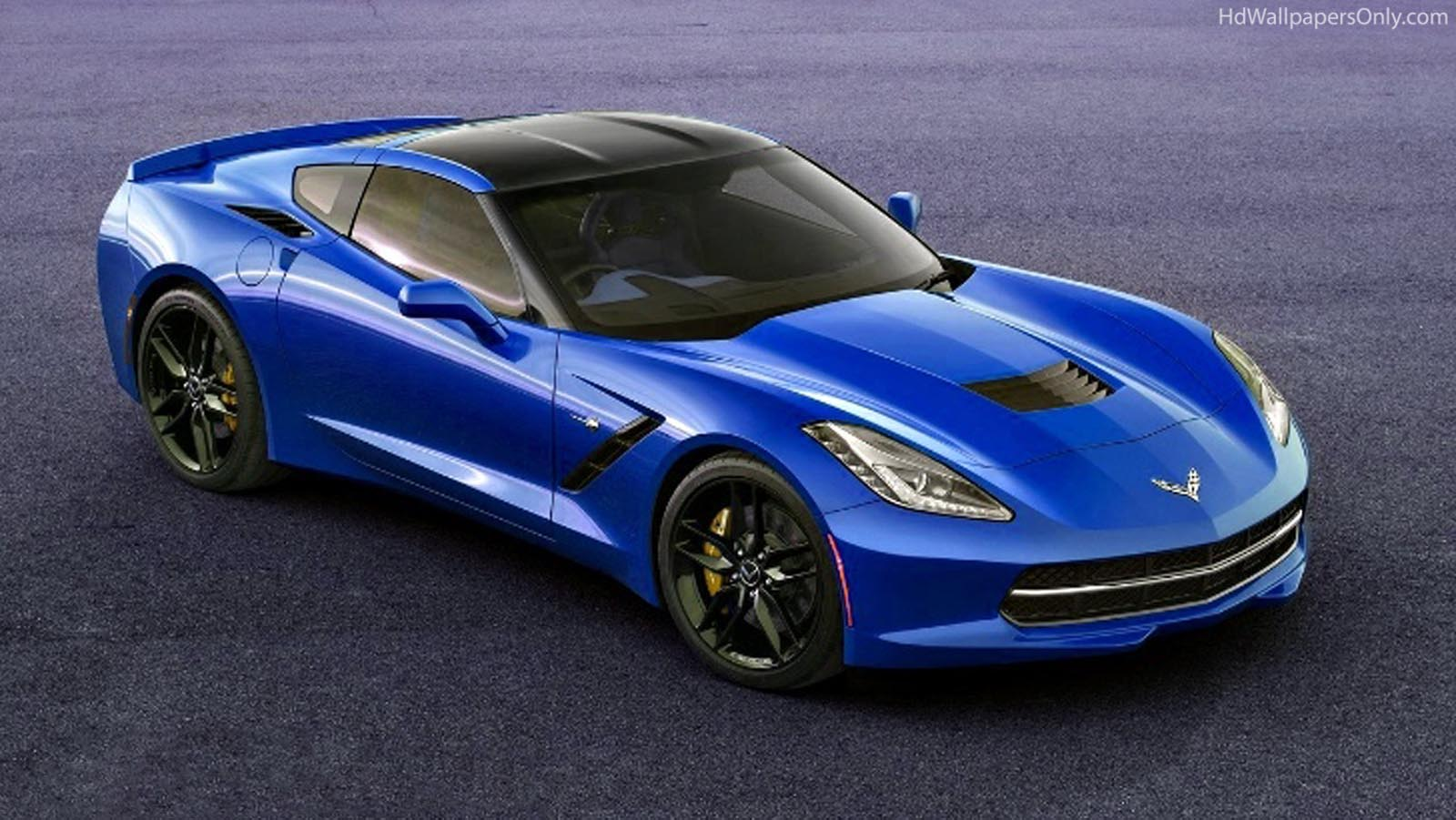2014 Corvette C7 5537 Hd Wallpapers in Cars   Imagescicom 1600x901