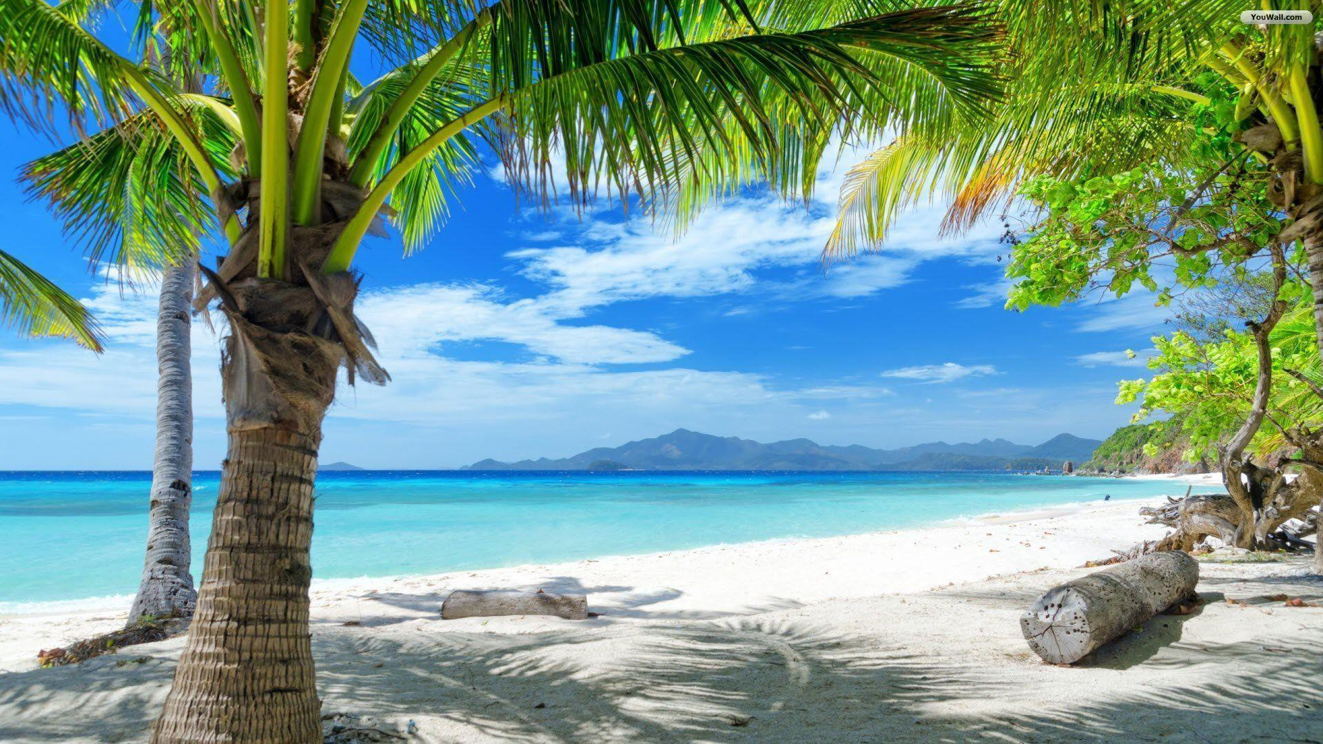 Beach Paradise Wallpapers 1920x1080