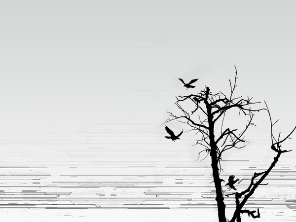 trees abstract trees birds silhouette 1600x1200 wallpaper Birds 600x450