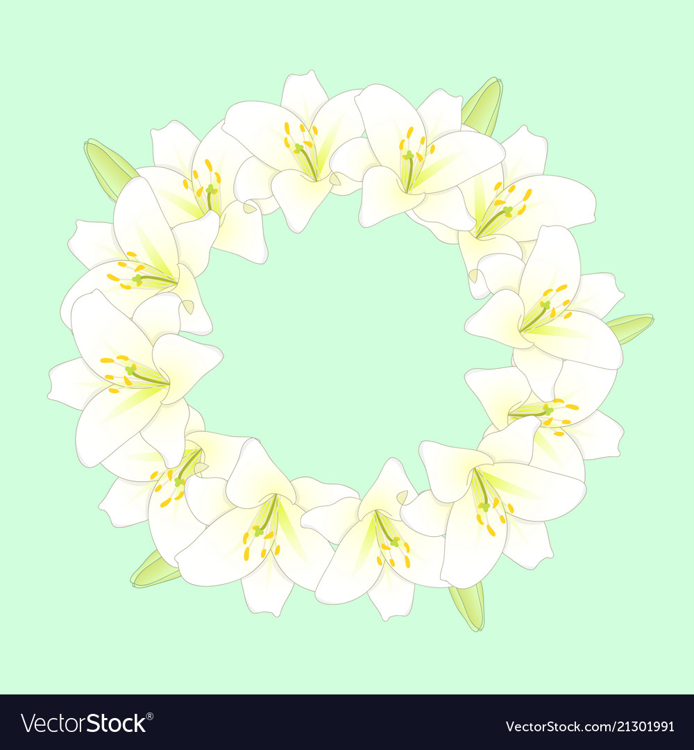 White lily flower wreath on green mint background Vector Image 1000x1080