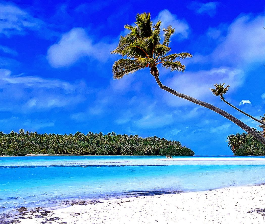 Caribbean Beach Wallpaper Best Wallpaper Gallery 1049x890