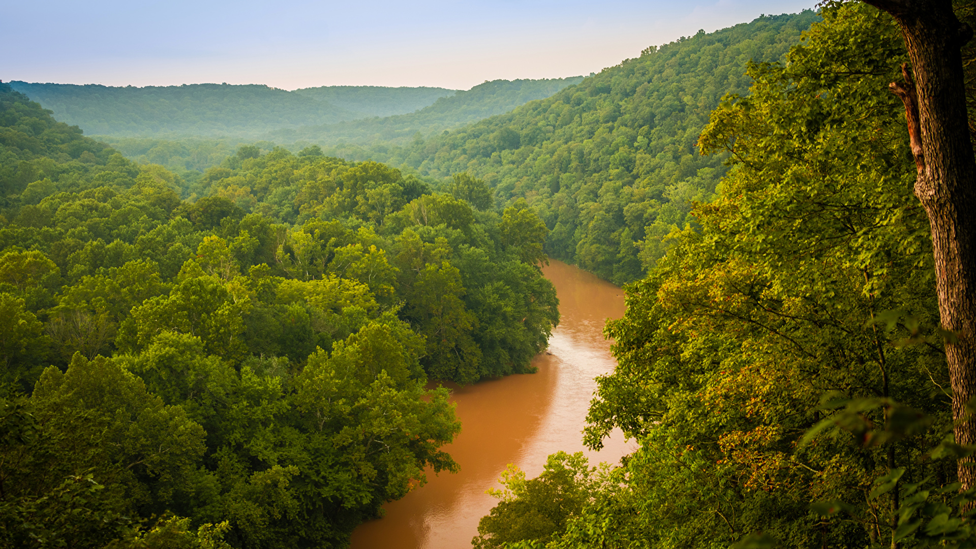 Images USA Mammoth Cave National Park Nature Parks Forests 1920x1080 1920x1080