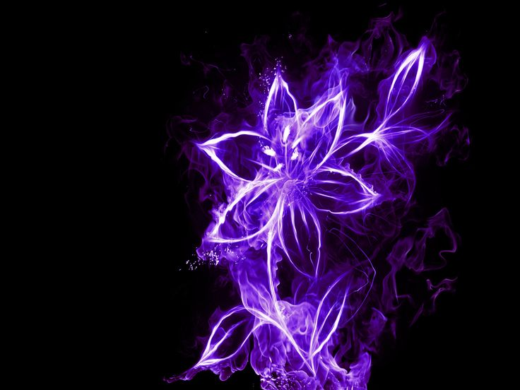 Neon Backgrounds Neon Flower Wallpaper   Download The Neon 736x552