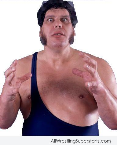 Amazing Andre The Giant   WWE Superstars WWE Wallpapers 383x475