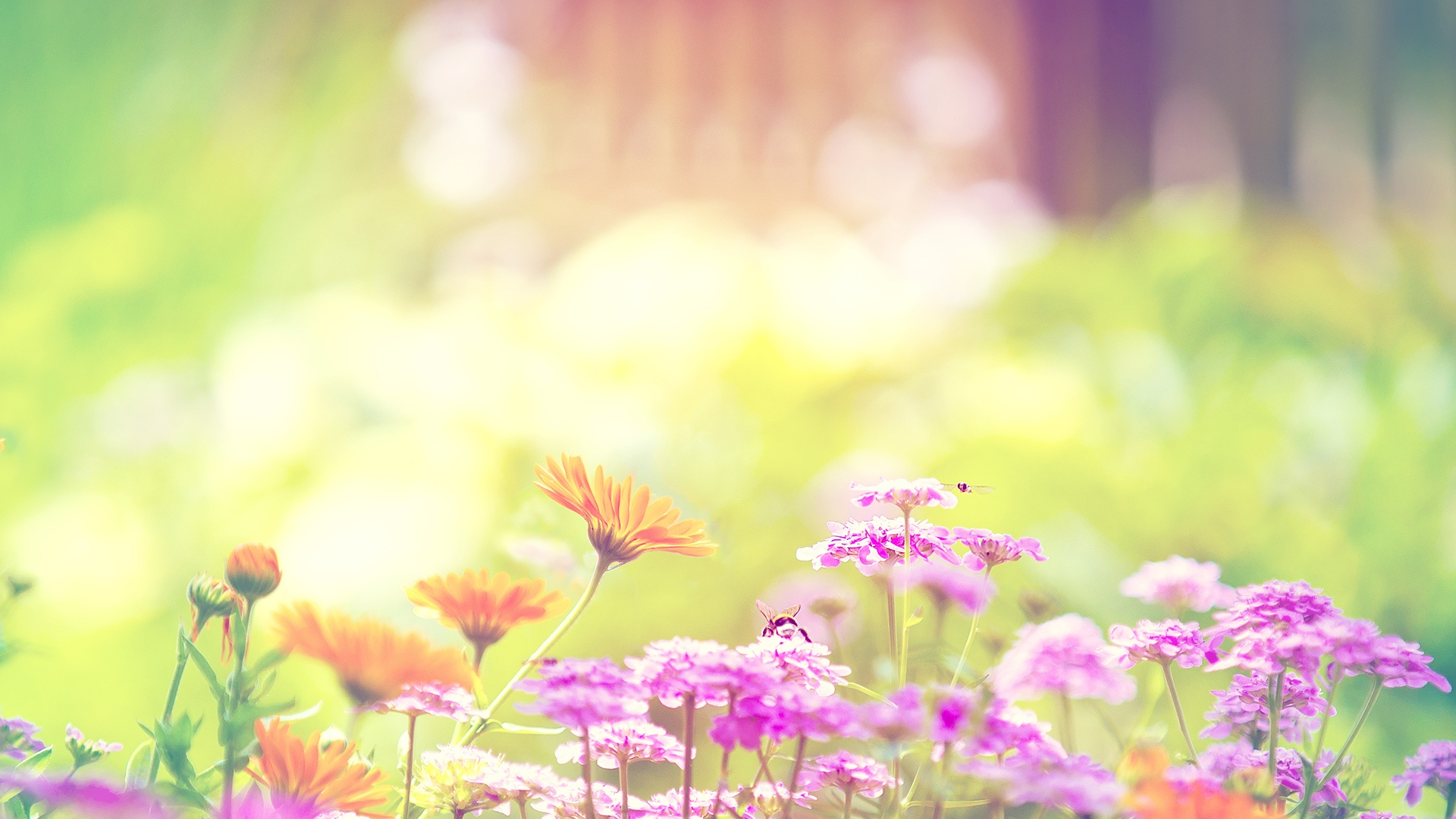 Spring Backgrounds Tumblr 1920x1080