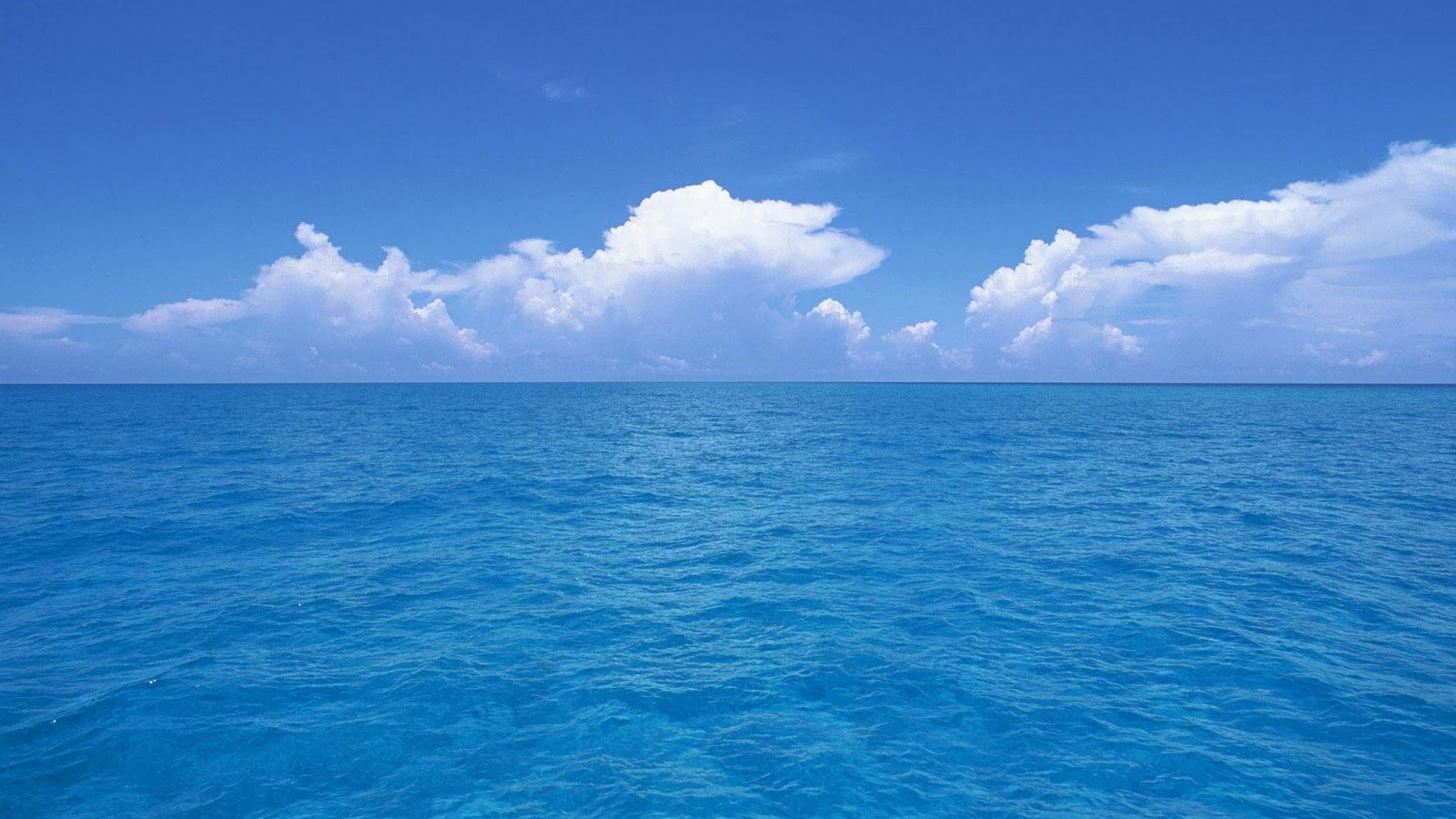 Sea Wallpapers HD Nice Wallpapers 1600x900