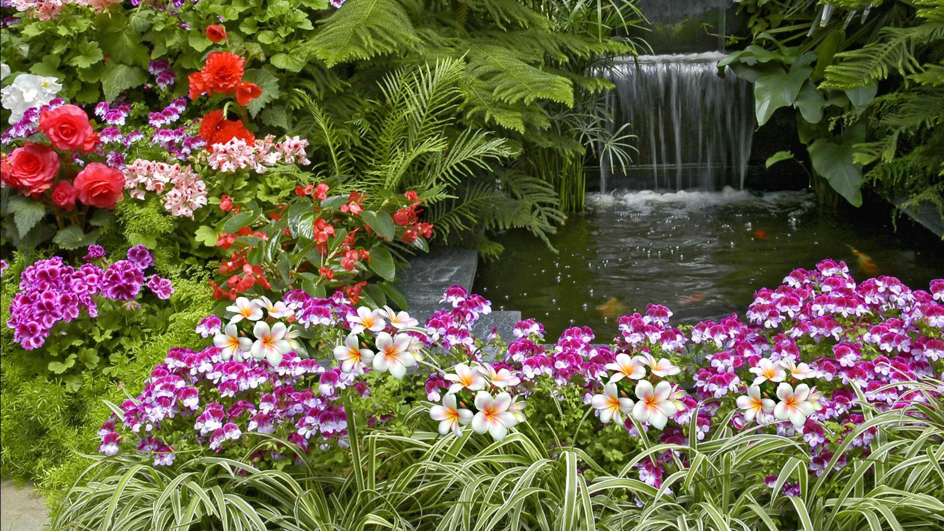 Flower Garden Wallpapers for DesktopWallpaperSafari