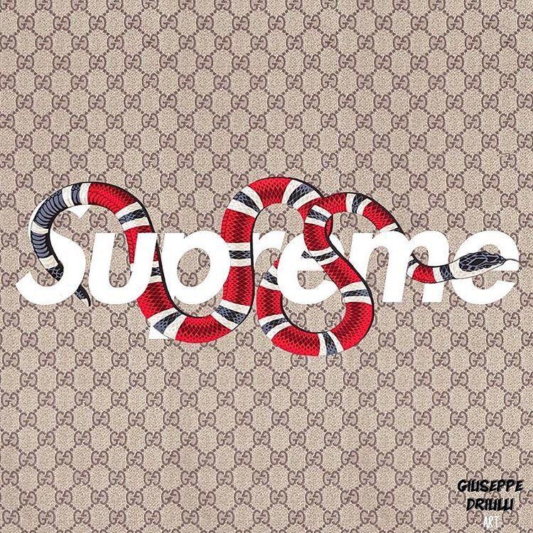 48+] Gucci iPhone Wallpaper Supreme on WallpaperSafari