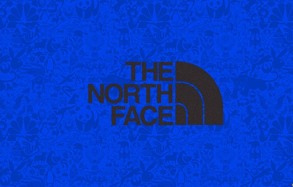 The north face wallpapers wallpapersafari - The north face wallpaper for iphone ...