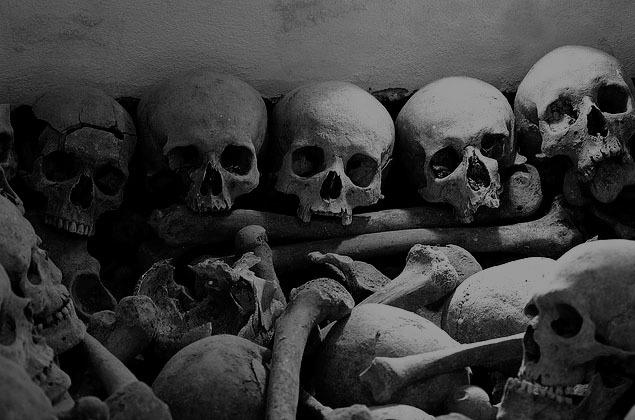 black and white bones skull skulls Favimcom 253708jpg 635x420