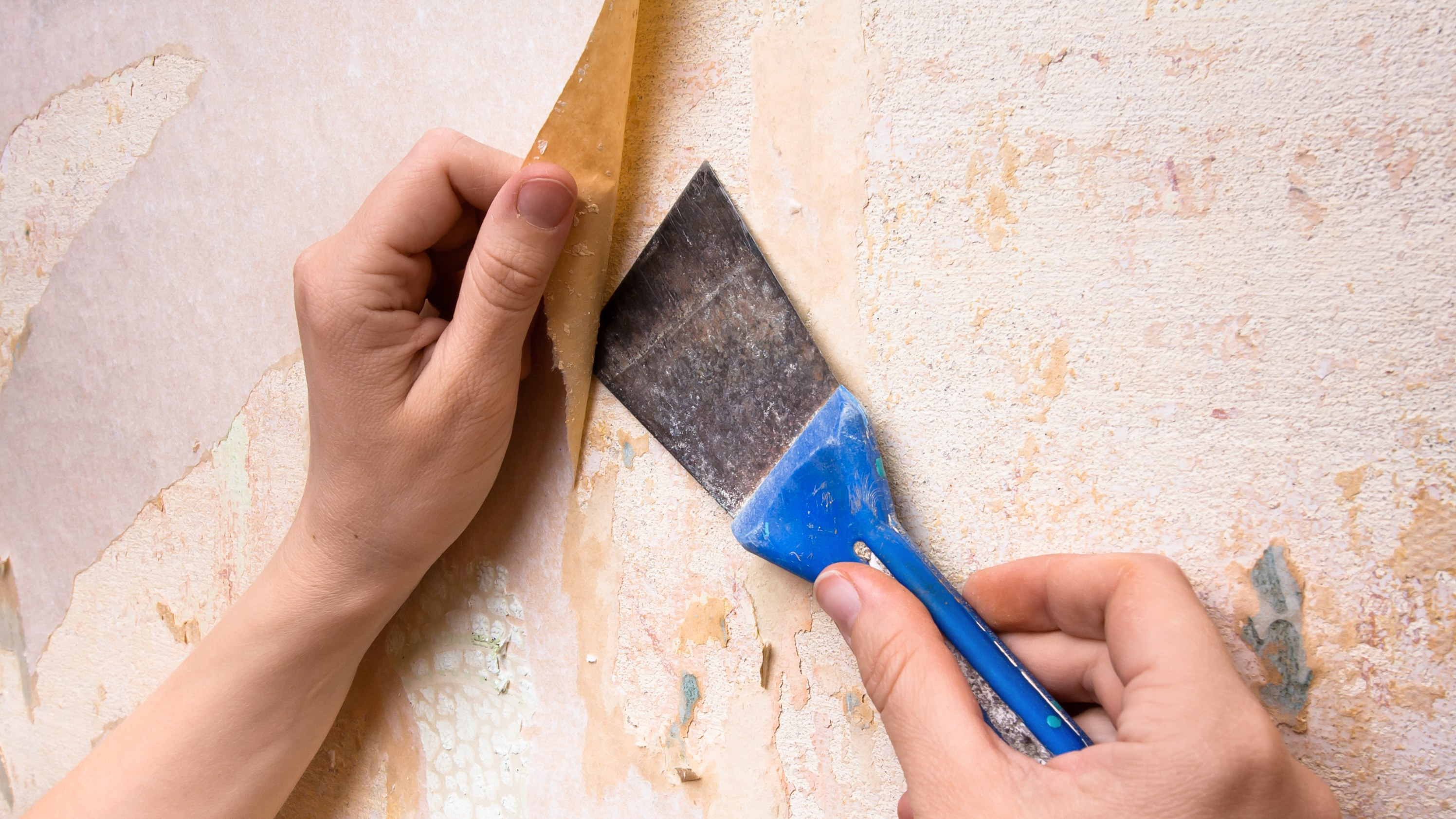 How To Remove Wallpaper Glue in 5 Simple Steps Architectural Digest 2992x1683