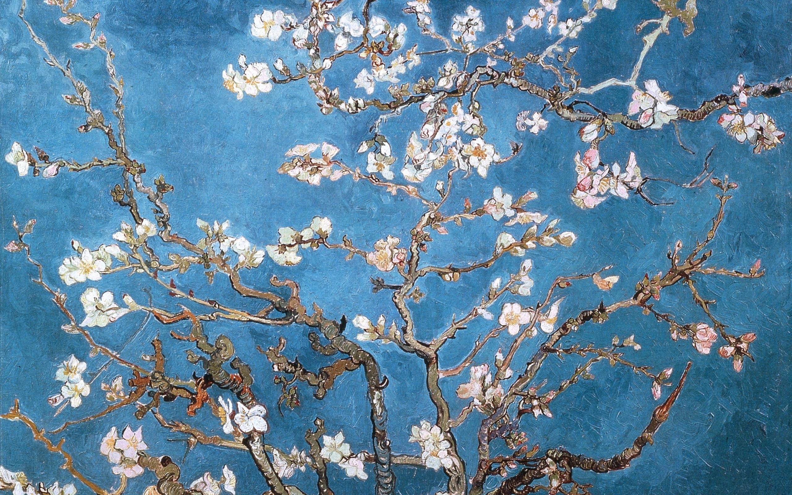 Vincent Van Gogh Wallpapers HD Vincent Van Gogh 2560x1600