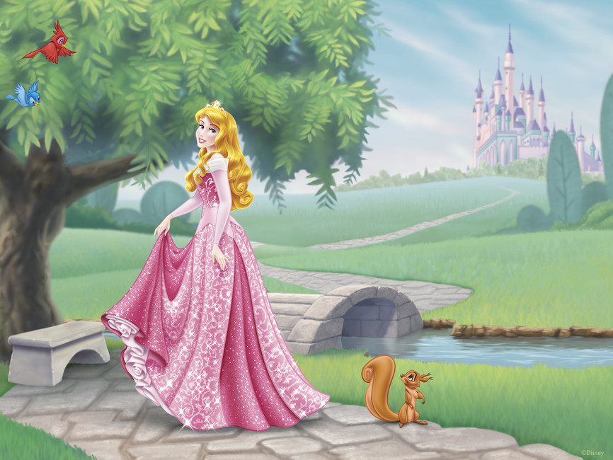 Disney Princess   Aurora 866x650