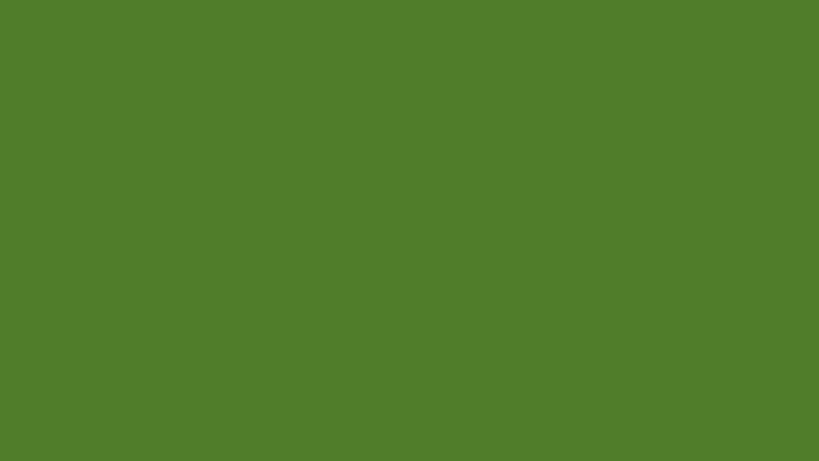 Green solid color background view and download the below background 1600x900