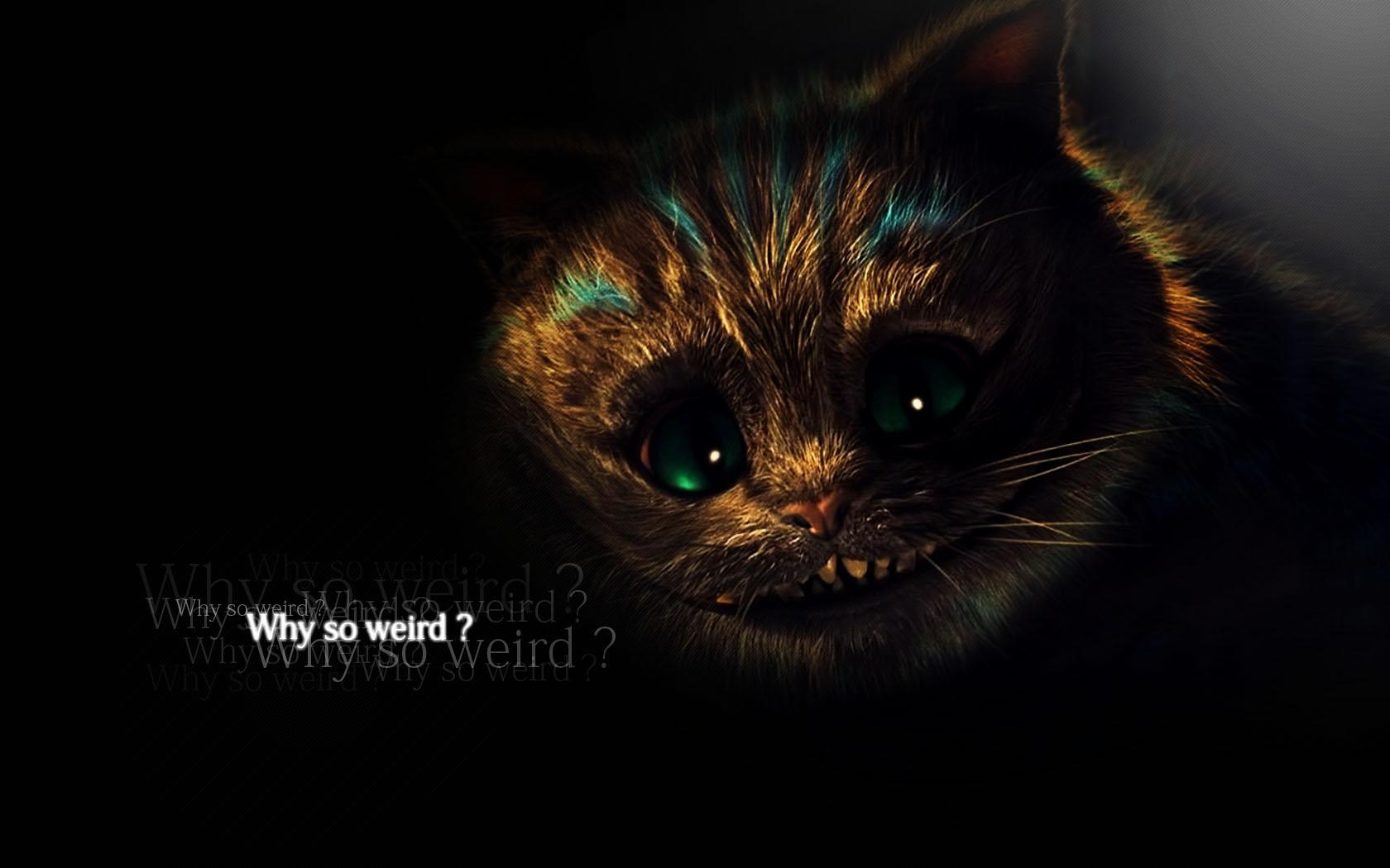 Evil Cheshire Cat Alice Wallpaper