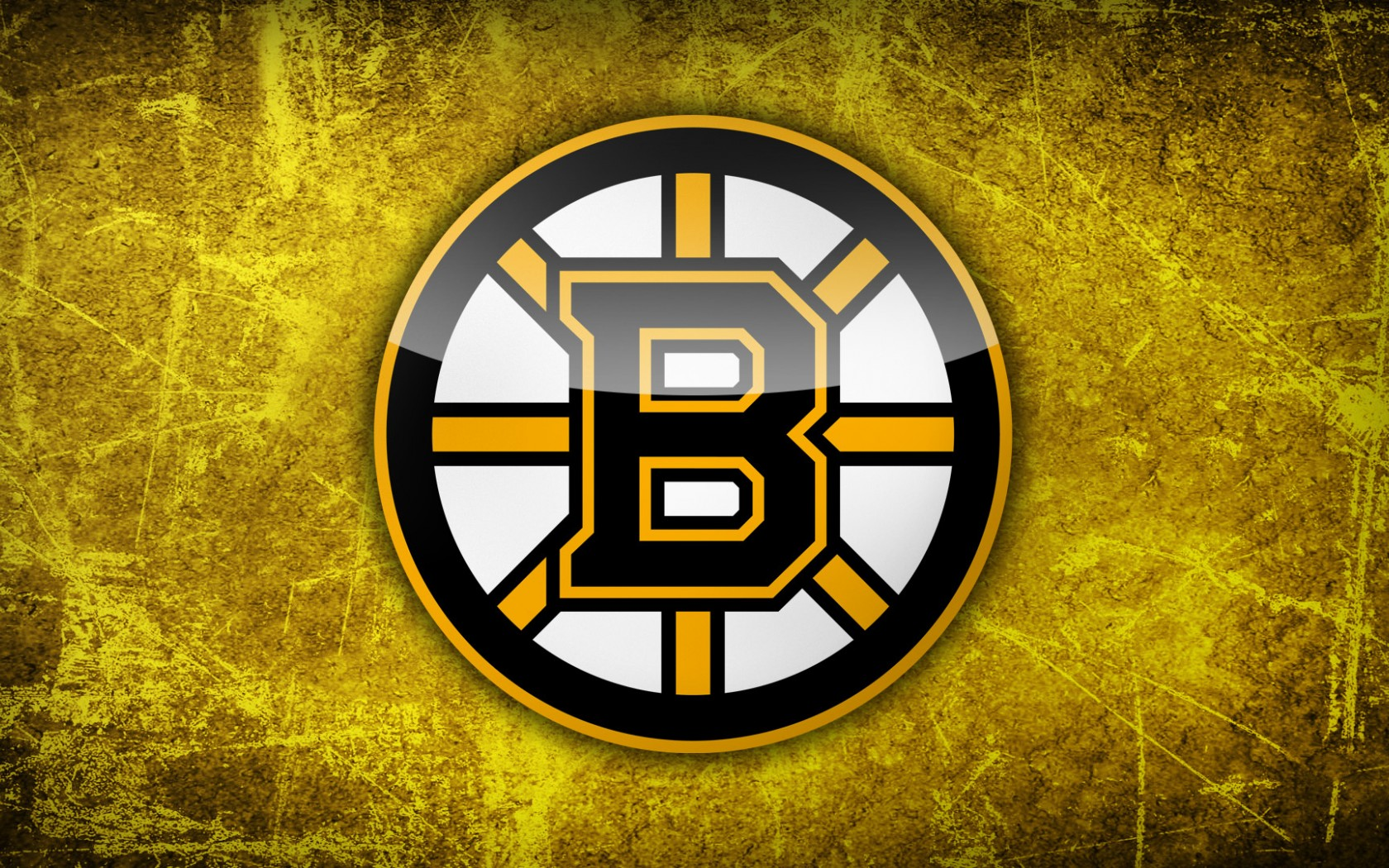 bruins - photo #28