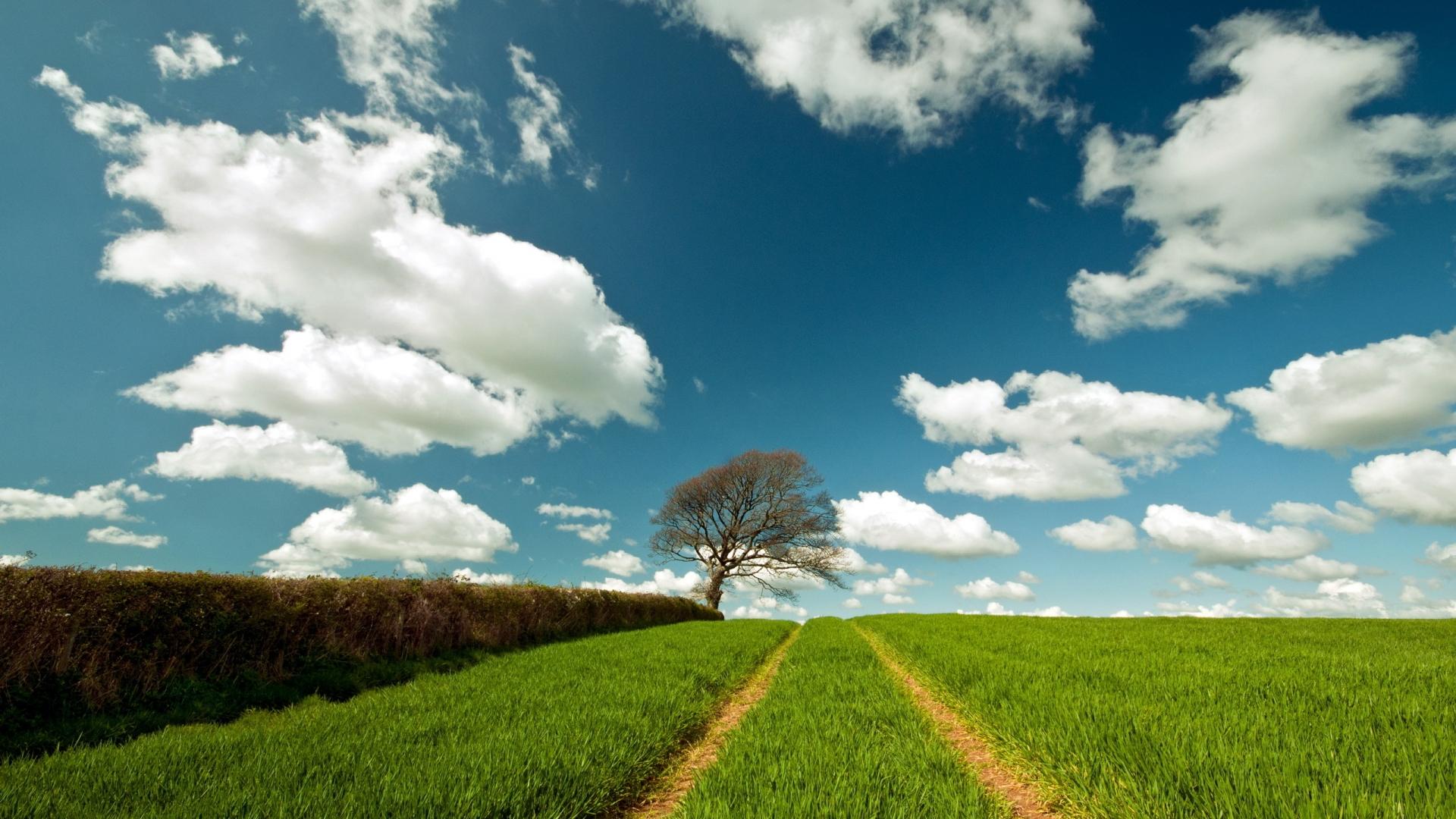 Landscape HD Wallpapers 1080p  WallpaperSafari