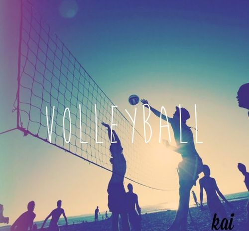 Volleyball Is My Passion Volleyball is my passion and 500x463