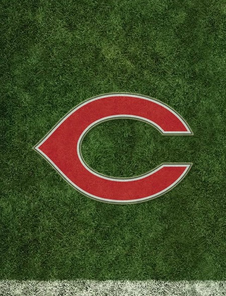 The Cincinnati Reds Wallpaper for Phones and Tablets 450x590