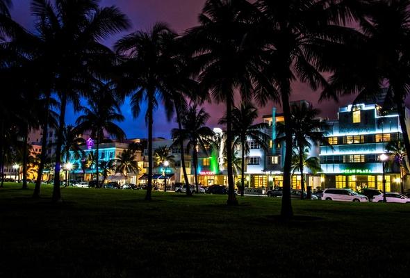Wallpaper Miami florida South Beach night palm car house hotel 590x400